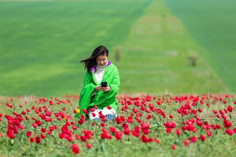 Калмыкия: Фестиваль тюльпанов