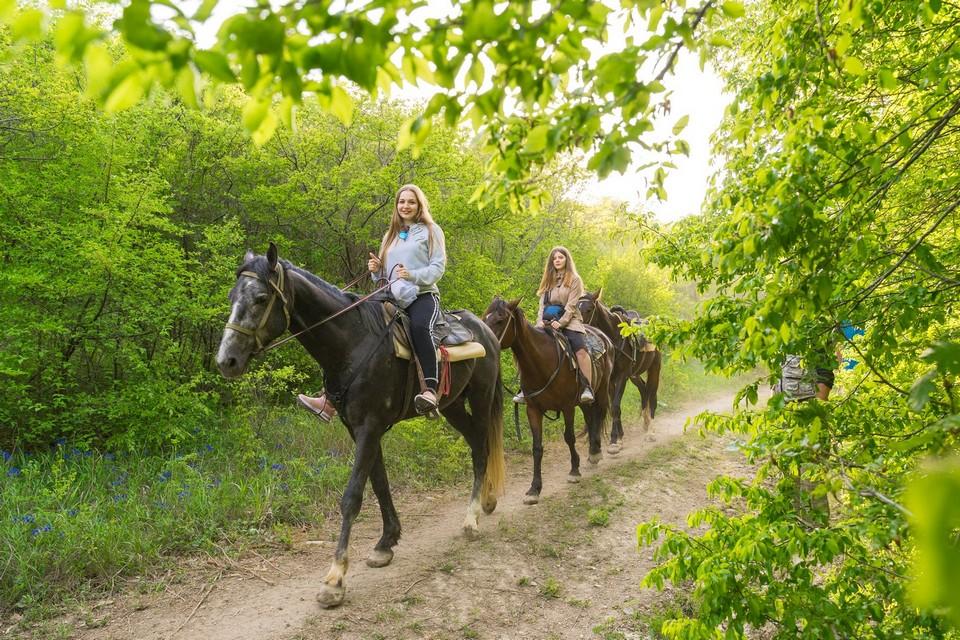 Конные прогулки в Чекупсе!